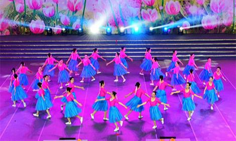 2016第十一屆舞動北京群眾廣場舞蹈大賽決賽/VTS_01_4.mp4