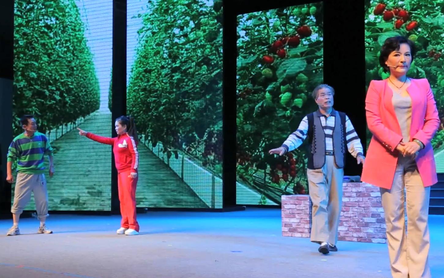 第十七屆群星獎評獎活動——北京地區(戲劇類)入圍作品《良心果》